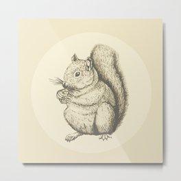 squirrel Metal Print