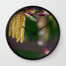 Concept nature : Alder buds Wall Clock