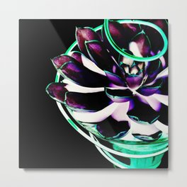 Glowing Echeveria Metal Print