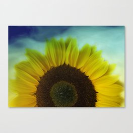 little pleasures of nature -31- Canvas Print