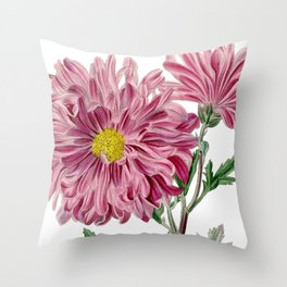 Light Purple Chrysanthemum / W. Curtis 1857 Throw Pillow
