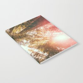 California Redwoods Sun-rays and Sky Notebook