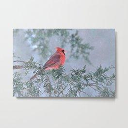 Sleet Cardinal Metal Print