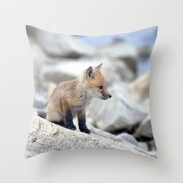 Watercolor Fox, Red Fox 27, Union Reservoir, Boulder Throw Pillow