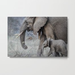 Mommy  Elephant Metal Print