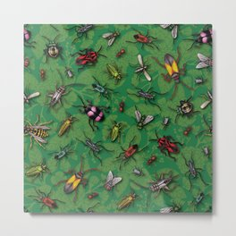Bugs & Insects on Green Floral Background Metal Print