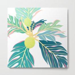 Breadfruit Large Scale Metal Print