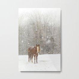 Western Winter Wonderland Metal Print