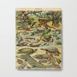 Reptiles Vintage Scientific Illustration French Language Encyclopedia Lithographs Educational Diagra Metal Print