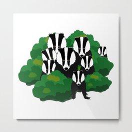 Badgers Metal Print