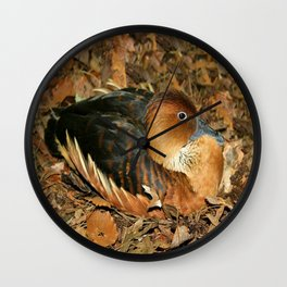 Fulvous Whistling Duck Wall Clock