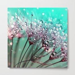 Dewdrops & Dandelions Metal Print