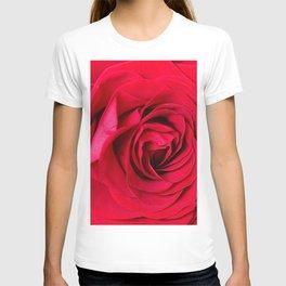 Red Rose Close-up #decor #society6 #buyart T-shirt