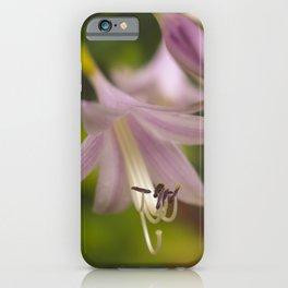 Close-up Hosta Bloom Botanical / Nature / Floral Photograph iPhone Case