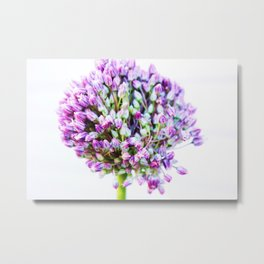 Purple May Garden Metal Print