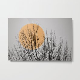 Birds and tree silhouette Metal Print