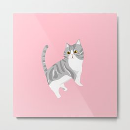 American Shorthair Mix Cat Metal Print