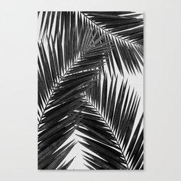 Palm Leaf Black & White III Leinwanddruck