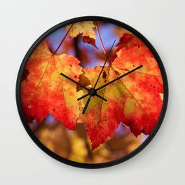 Autumn in Canada - Maple leafs Wall Clock
