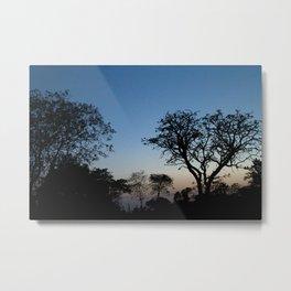 African Trees Metal Print