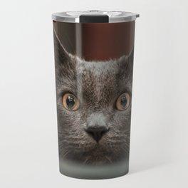 What a cat Travel Mug