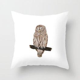 Sleepy Owl Throw Pillow