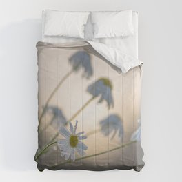 New day with dewy daisy Comforters