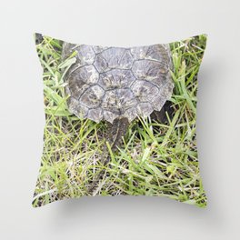 Snapping Turtle 6 Throw Pillow