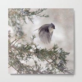 Fly-away Tufted Titmouse Metal Print