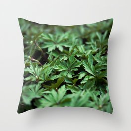 Buttercup Leaves Throw Pillow
