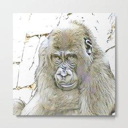 fascinating altered animals - Gorilla Metal Print
