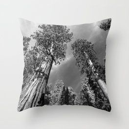 Giant Sequoia Trees in black and white Throw Pillow