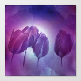 4 purple tulips on watercolor Canvas Print