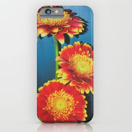 Daisies Gone By iPhone Case
