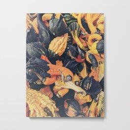 autumn 1 Metal Print