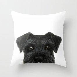Schnauzer-black Dog illustration original painting print Throw Pillow