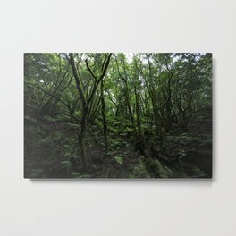 The Anaga Rural Park and forest of Tenerife,  Metal Print