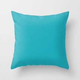 Dark Tropical Aquamarine 4 Blue Green Solid Color Inspired by Behr Placid Sea P470-5 Throw Pillow