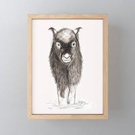 Baby Musk Ox Framed Mini Art Print