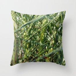 Palm tree foliage Throw Pillow