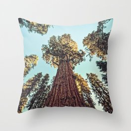 The Largest Tree in the World Throw Pillow