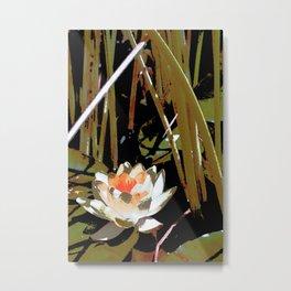 Pond Lily 20 Metal Print