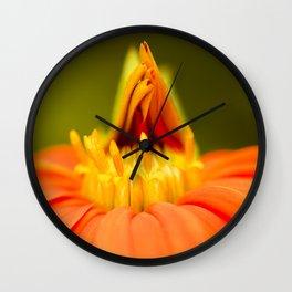 Mexican Sunflower Unfolding Wall Clock