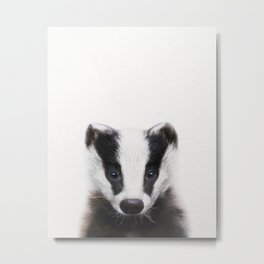 Baby Badger, Baby Animals Art Print By Synplus Metal Print