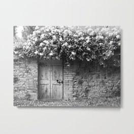 Old Italian wall overgrown with roses Metal Print
