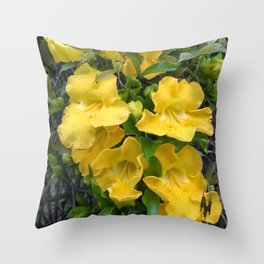 Cat's Claw Vines Throw Pillow