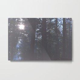 Shine Metal Print