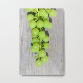 Young green vine grapes Metal Print