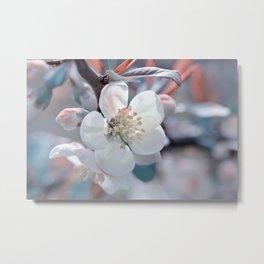 Spring 131 Metal Print