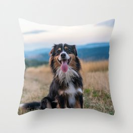 Australian Sheep Dog Throw Pillow
